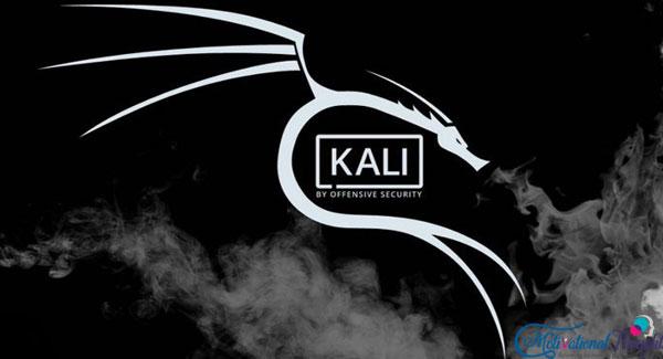 काली लिनक्स क्या है और इसे कैसे इस्तेमाल करे| What is Kali Linux and How to use these Software