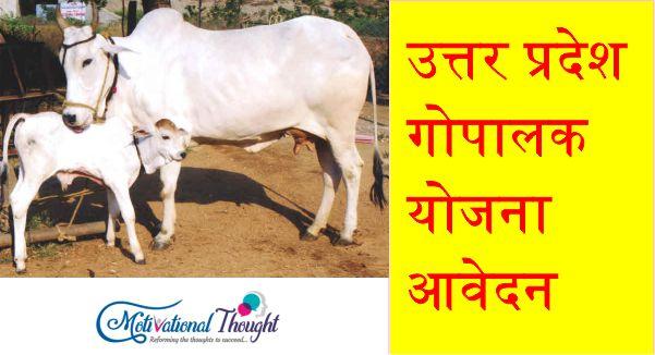 उत्तर प्रदेश गोपालक योजना|आवेदन| Uttar Pradesh Gopalak Yojana in Hindi