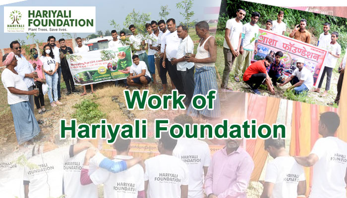 हरियाली फाउंडेशन का कार्य आप की मदद | Help for Hariyali Foundation